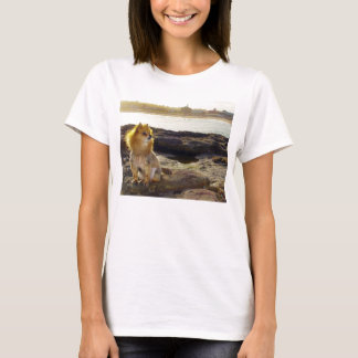 Camiseta T-shirt da praia de Pomeranian