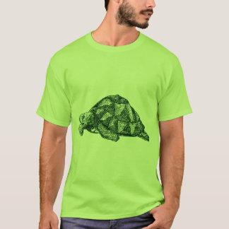 Camiseta T-shirt da tartaruga verde