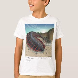 Camiseta T-shirt de Arthropleura