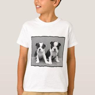 Camiseta T-shirt de Boston Terrier