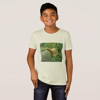 Camiseta T-shirt do Apatosaurus
