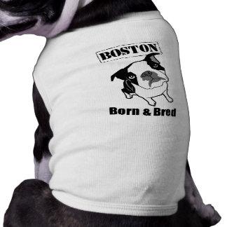 Camiseta T-shirt do cão de Boston Terrier
