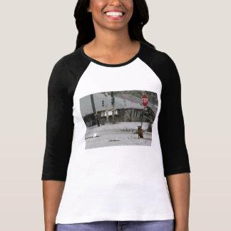 Camiseta t-shirt do cão de Katrina