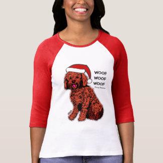 Camiseta T-shirt do Raglan do Bella das mulheres de