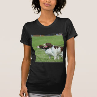 Camiseta T-shirt do Spaniel de Brittany