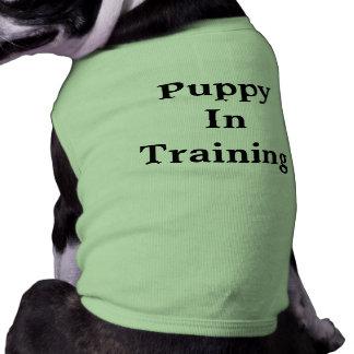 Camiseta T-shirt do treinamento do filhote de cachorro