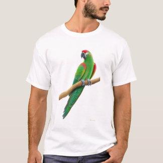 Camiseta T-shirt fronteado vermelho psto em perigo do