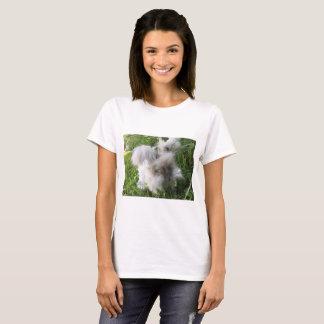 Camiseta T-shirt inglês do coelho do angora - Bradley