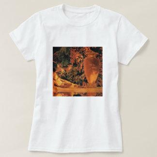 Camiseta T-shirt: Jardim de Allah Maxfield Parrish
