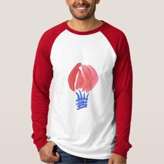 Camiseta T-shirt longo do Raglan da luva dos homens do