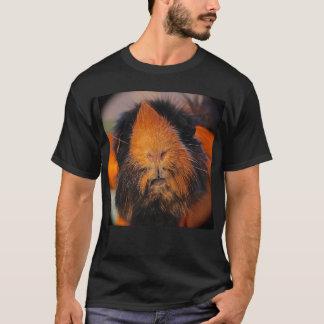 Camiseta T-shirt peluches de Carl