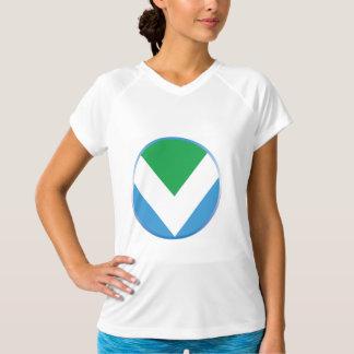 Camiseta T-shirt que caracteriza a bandeira oficial do