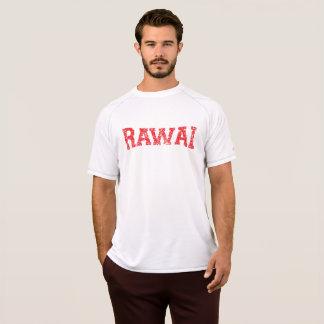 Camiseta T-shirt seco da malha do dobro do campeão da