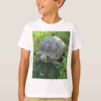 Camiseta Tartaruga na grama