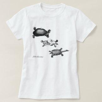 Camiseta Tartarugas de John Laurens