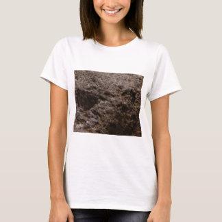 Camiseta textura pitted da rocha