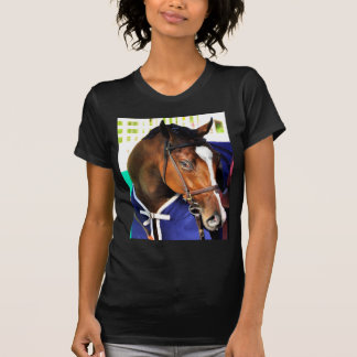 Camiseta Ticonderoga