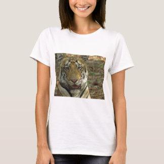 Camiseta Tigre bonito e sorrindo