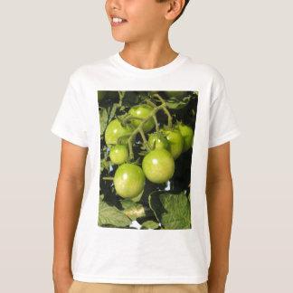 Camiseta Tomates verdes que penduram na planta no jardim