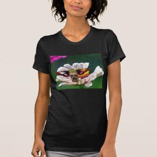 Camiseta Traça de colibri