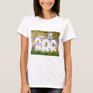 Camiseta Trio de Bichon Frise - jardim (VG)