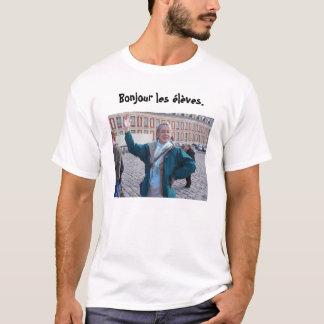 Camiseta Troca 2,0 do francês de Niskayuna (com ganso!)