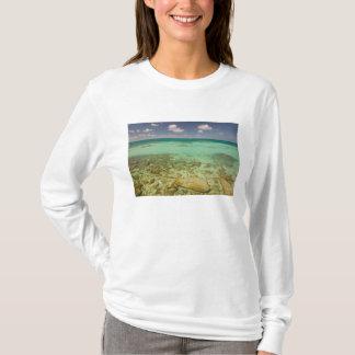 Camiseta Turcos e Caicos, ilha grande do turco, Cockburn 2