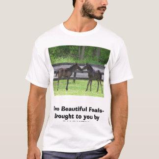 Camiseta Twofoals2006, dois Potros bonitos trouxe a y…