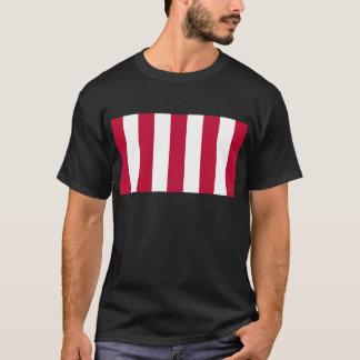 Camiseta U.S. Filhos da bandeira vertical da tira da