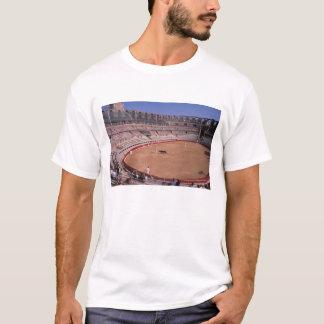 Camiseta UE, France, Provence, Arles. Anfiteatro