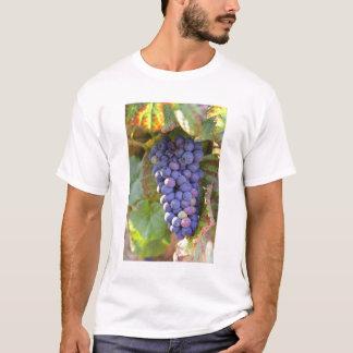 Camiseta Um grupo de uvas Noir de Pinot em um Chambertin