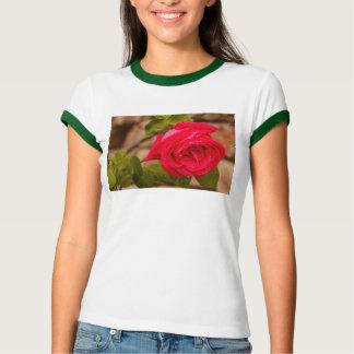 Camiseta um molhado aumentou no Bella das mulheres+T-shirt