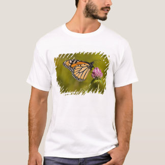 Camiseta Uma borboleta de monarca, plexippus do Danaus, no