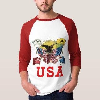 Camiseta Uma história de bandeiras americanas em um Tshirt