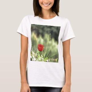 Camiseta Uma papoila