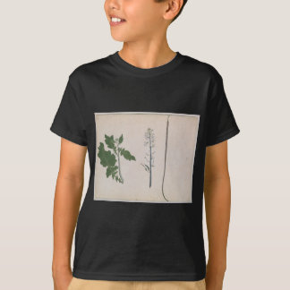 Camiseta Uma planta de rabanete, uma semente, e uma flor