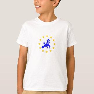 Camiseta União européia