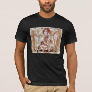 Camiseta Unum do pluribus de E
