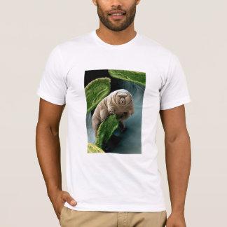 Camiseta Urso da água