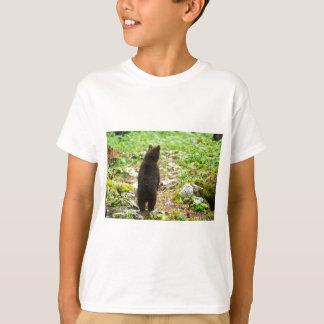 Camiseta Urso de Brown do bebê de um ano em Slovenia