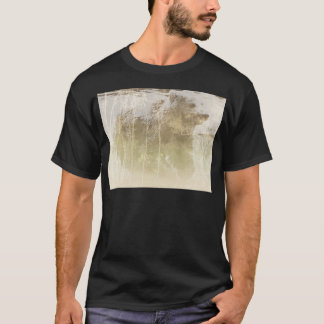 Camiseta Urso expor
