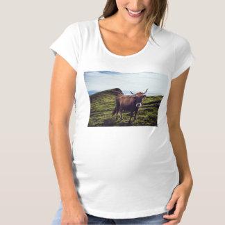 Camiseta Vaca bovina na paisagem bonita