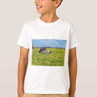 Camiseta Vaca com as vitelas que pastam no prado com