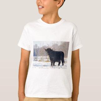 Camiseta Vaca escocesa preta do escocês na neve do inverno
