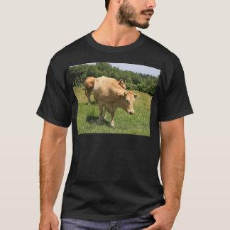 Camiseta Vacas no campo, EL Camino, espanha 2