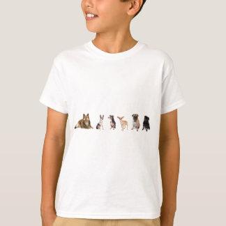 Camiseta Variedade de cães, de Sheltie, de chihuahuas, e de