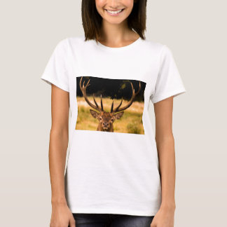 Camiseta veado do parque de richmond