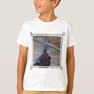 Camiseta Victoria coroou o pombo