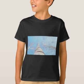 Camiseta vidoeiro