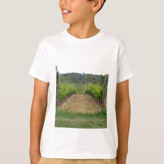 Camiseta Vinhedo no primavera. Toscânia, Italia